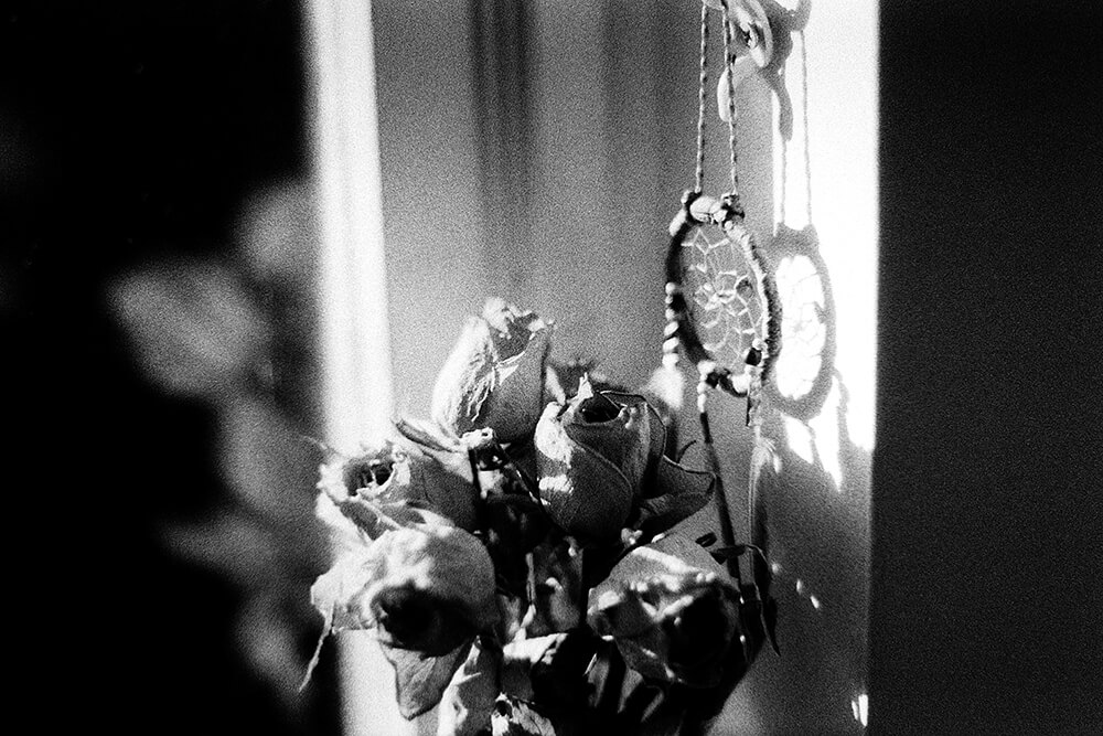 Dried Roses and a Dreamcatcher in my flat ©Samuel F.
