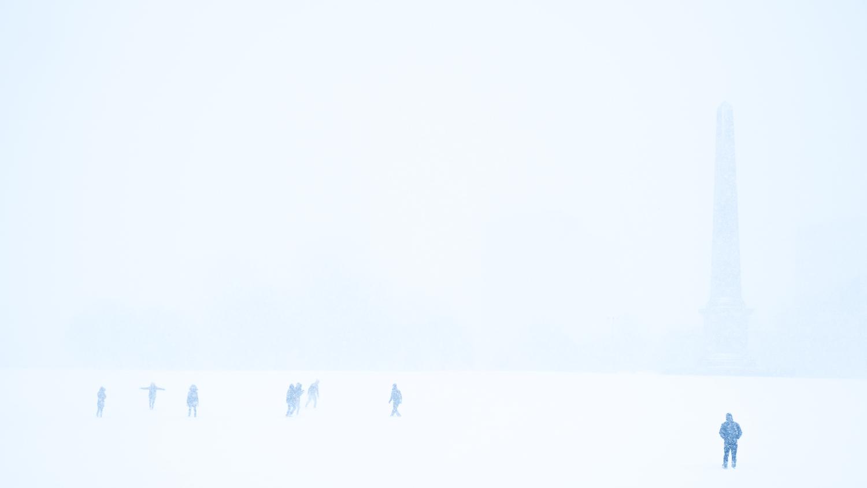 The white field ©Samuel F.